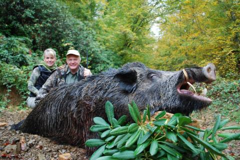 A WHOLE WORLD OF WILD HOGS |http://www.craigboddington.com ...