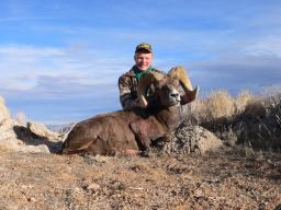 An Arizona desert sheep tag is a once-in-a-lifetime tag, so you'd best make it count.